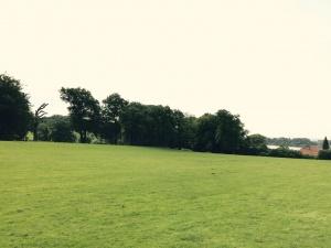 Platz für Yoga und Entspannung in der Natur: Jenischpark Hamburg